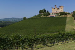 Summer view in the Langhe Unesco heritage Royalty Free Stock Image