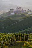 Summer view in the Langhe Unesco heritage Royalty Free Stock Photography
