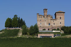 Summer view in the Langhe Unesco heritage Royalty Free Stock Photo
