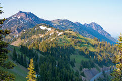 Summer view of mountains from a hiking trail at hurricane ridge Royalty Free Stock Images