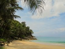Summer view on the ocean away from people among the clean sandy beach, blue ocean and beautiful palm trees stock image