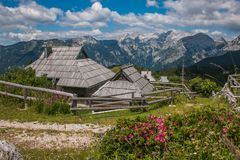 Summer View Of Velika Planina Rural Village With Wild Flowers In Slovenia Royalty Free Stock Photography