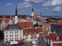 Summer view of the Old Town of Tallinn, Estonia. Summer view of the central square, towers and tiled roofs of ancient houses in the Old Town of Tallinn, Estonia Stock Image