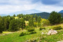 Summer view of Pyrenees mountains Royalty Free Stock Images