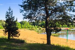 Summer view of the sandy lakeshore in suburban residential district. royalty free stock images