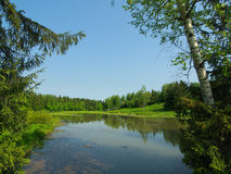 Summer view of small lake with forest around. And clear blue sky Royalty Free Stock Photo