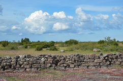 Summer view at a stonewall in a plain landscape Stock Photo