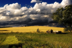 Summer in Village. Tractor goes afield Royalty Free Stock Photo