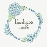Summer Vintage Floral Greeting Card. With Blooming Hydrangea and garden flowers. Thank you botanical natural hydrangea Royalty Free Stock Photos