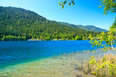 Summer vista, Lake Crescent, Olympic National Park Royalty Free Stock Photo