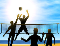 Summer volleyball Stock Photography