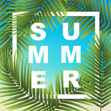 Summer wallpaper with tropical plants. vector illustration   Royalty Free Stock Photo