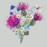 Summer watercolor natural bouquet with wild flowers Royalty Free Stock Image
