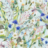 Summer watercolor seamless floral pattern with wild flowers Royalty Free Stock Image