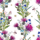 Summer watercolor seamless floral pattern with wild flowers Stock Photos