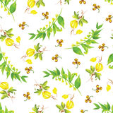 Summer watercolor seamless vector pattern Royalty Free Stock Photography
