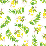 Summer watercolor seamless vector pattern Stock Images