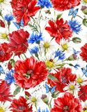 Summer Watercolor Vintage Floral Seamless Pattern Stock Image