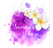 Summer watercolored splash with flowers Stock Photos