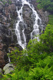 Summer waterfall. In the Giant mountains (Czech Republic royalty free stock photo