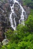Summer waterfall Royalty Free Stock Photo