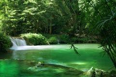 Summer waterfall Royalty Free Stock Photos