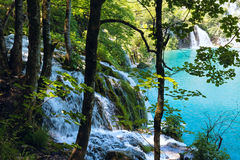 Summer waterfalls in Plitvice (Croatia). Stock Images