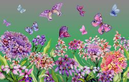 Summer wide banner. Beautiful vivid iberis flowers and colorful butterflies on green background. Horizontal template. Seamless panoramic floral pattern stock illustration