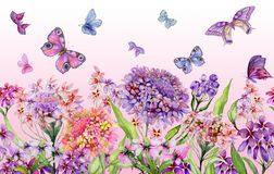 Summer wide banner. Beautiful vivid iberis flowers and colorful butterflies on pink background. Horizontal template. Vector Illustration