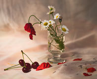 Summer  wild flowers and cherries. Still life with a summer  wild flowers and cherries Royalty Free Stock Image