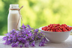 Summer, wild strawberry, milk and flowers. royalty free stock images