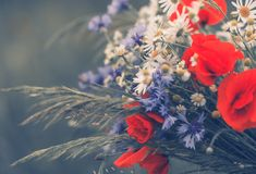 Summer Wildflower Bouquet Stock Photography