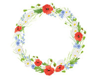 Summer wildflower wreath Royalty Free Stock Photography
