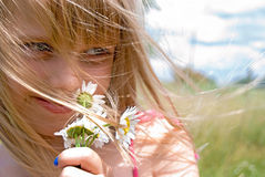 Summer Wind Stock Photography