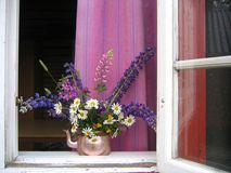 Summer window. Copper coffee pot with wild flowers in an open window Royalty Free Stock Image