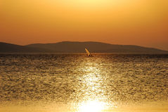 Summer windsurfer. Bold windsurfer under a warm summer sunset Royalty Free Stock Photo
