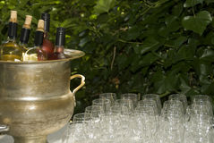 Summer wines Royalty Free Stock Images
