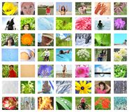 Summer and winter leisure and sport Stock Image
