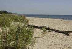 Summer Wisconsin Beach Stock Photos