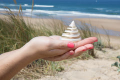 summer woman with shells in hands in front of ocean Stock Images