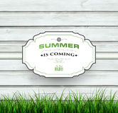 Summer Wooden Background Stock Photo
