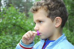 Summer in the woods a  curly boy smelling pink flower. Royalty Free Stock Photos