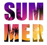 Summer Word from Beautifil Palm Tree Leaf Silhouette Background Vector Illustration stock illustration
