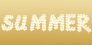 Summer word created from flower Stock Image