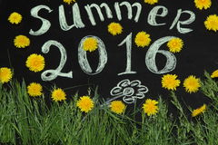 Summer 2016 in the yellow dandelions. On the Board stock illustration