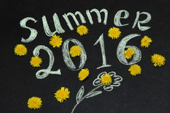 Summer 2016 in the yellow dandelions. On the Board royalty free illustration