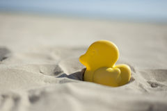 Summer yellow duck beach toy affix in the dry sand. Selective fo Royalty Free Stock Photography