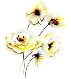 Summer yellow flowers Stock Photos