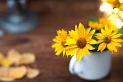 Summer yellow flowers in a white circle still life. Summer yellow flowers in a white circle still life royalty free stock photos