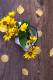 Summer yellow flowers in a white circle still life. Summer yellow flowers in a white circle still life stock photos
